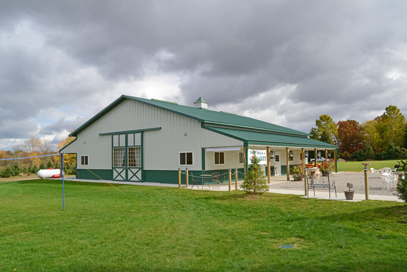 green and white suburban building